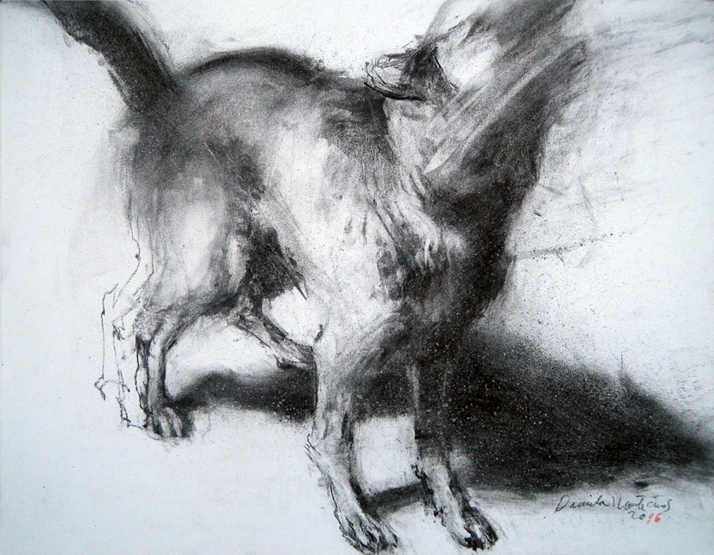 Daniela Montecinos Perro lobo