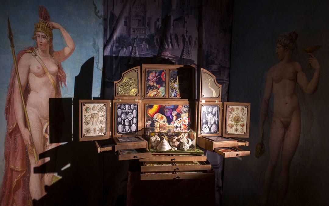 Le cabinet des mondes cachés - ©Didier Plowy
